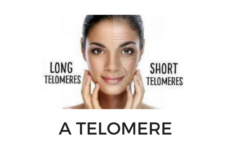 gorgrous40plus telomeres